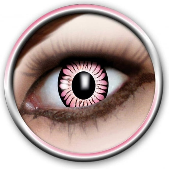 Eye Catcher Tone Lenses - Two Tone - Pink Burst (A52) - (Usage: 12 Months - 1 Pair)