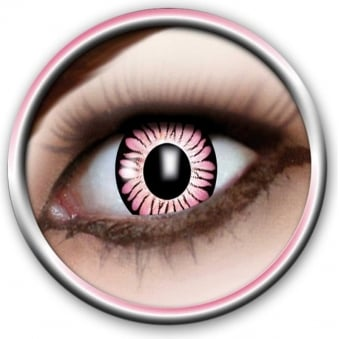 Tone Lenses - Two Tone - Pink Burst (A52) - (Usage: 12 Months - 1 Pair)