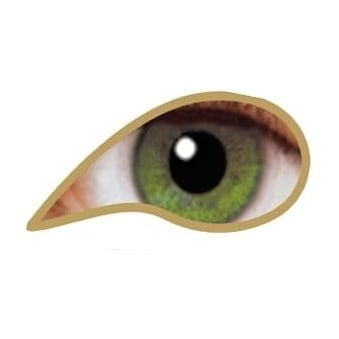 Natural 1 Day Coloured Contact Lenses - illusionz - Olive Green (1 Pair)