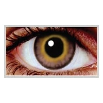 Natural Coloured Contact Lenses Infusionz - Hazel Bronze (Usage:1,3,12 Months - 1 Pair)